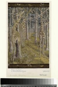 Giraffes - Robert Winthrop Chanler